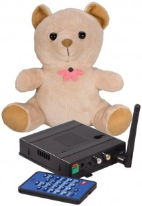 spy teddy bear camera